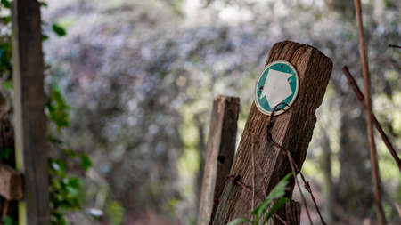Close up of an Old worn footpath sign in the middle of a wood