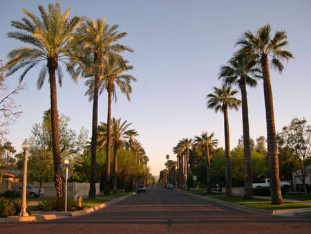 Arizona residential area photo