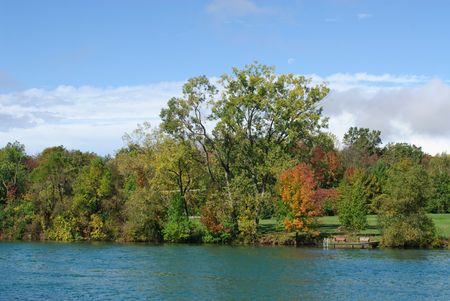 trees on riverbank on a bright, sunny fall day
