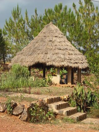buckaroo: African Buckaroo
