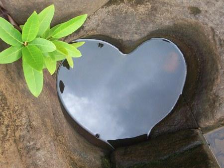 shaped: Heart Shaped Puddle