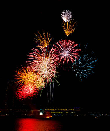 Colorful bursts of fireworks light up and decorate the night sky