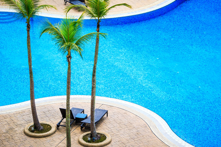 vacant: Vacant lounge chairs under palm trees by the sapphire blue waters of a resort pool. Stock Photo