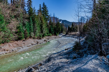 Crystal clear mountain stream in early spring. Stock Photo - 58302863