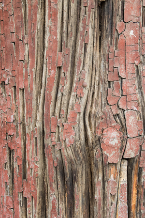 Close up of an ancient painted wood pillar revealing its cracked surface texture