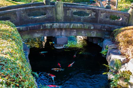 A stone bridge over a creek full of colorful koi fish