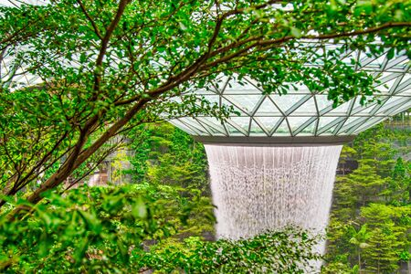 The Jewel Changi waterfall as seen through the trees