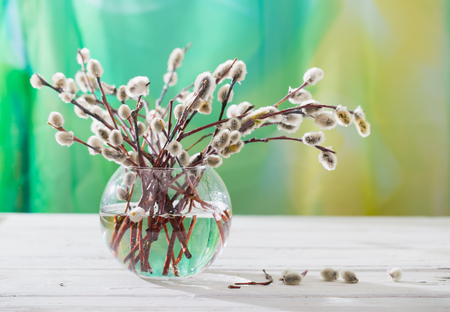 Spring bouquet for palm sunday. Willow branches with fluffy kidneys in a transparent glass vase. The wooden table, soft focus, small depth of sharpness, copyspace on the right
