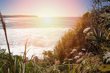 View of the ocean from the abrupt coast with a grass. Spain, Suances, summer day in the Province of Cantabria, stylization under kontrovy light of the sun from the ocean