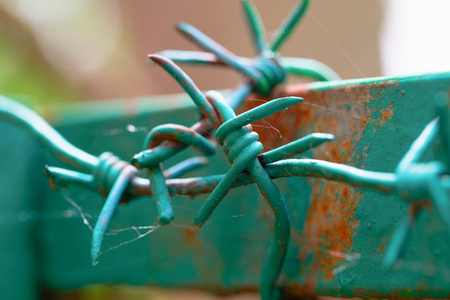 Barbed wire on the top part of a fence. A fence frame from an iron profile, the fence and a wire are painted green color. Close up, small depth of sharpness Stock Photo