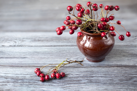 Red berries in a ceramic pot. A bouquet from red haw of a hawthorn in an ancient ceramic pot on a table from old gray boards. Copyspace at the left
