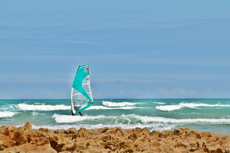 The windsurfer with a sail and coast among waves. Blue sky, sunny summer day