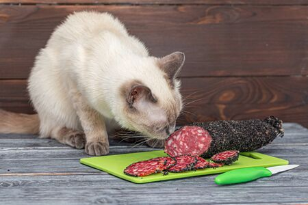 A cat sits on a table and sniffs a sliced smoked sausage. Thai cat is preparing to steal food on a rustic table from gray boards, next to a green plastic board