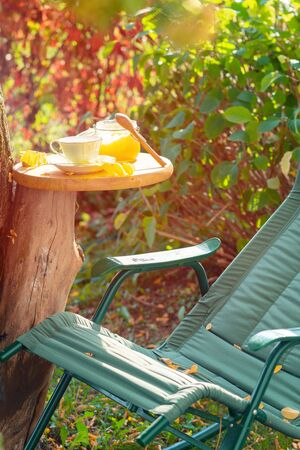 Tea with honey in the garden in early autumn against the backdrop of greenery and blushing grape leaves Banque d'images