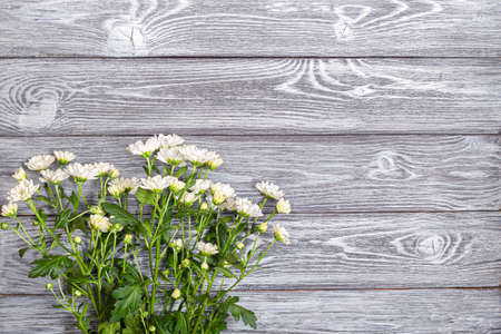 A bouquet of white bush chrysanthemums on a wooden table 写真素材