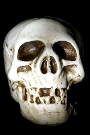 Photo of a Skull