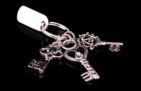 Silver Keys on a Keyring Stock Photo - 278972