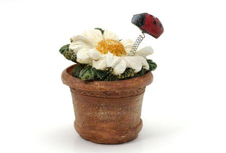 Photo of a Ceramic Flower