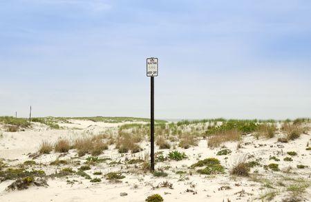 Photo of Dunes Imagens