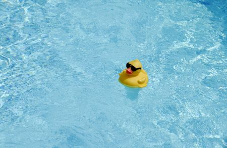 Rubberduck in a Swimming Pool Stock Photo - 468387