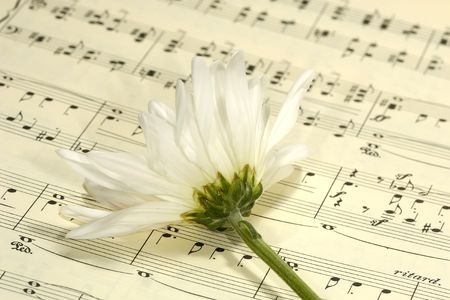 sheetmusic: Flower on Sheetmusic