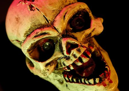 Photo of a Halloween Decoration  Skull Stock Photo