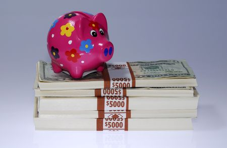 Photo of a Piggy Bank on a Stack of Cash