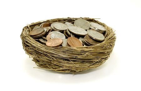nestegg: Photo of Money ina Nest - Retirement  Savings Concept
