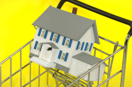 forsale: Photo of a Minature House in a Shopping Cart - Real Estate Concept