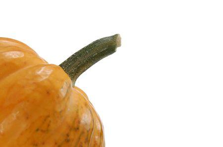 Foto de Pumpkin / Squash Tallo - por temporada - Antecedentes  Foto de archivo - 1849120