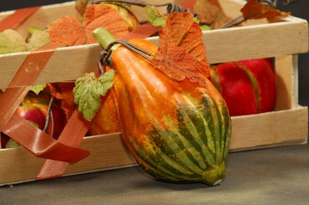Photo of Fall / Autumn Related Items - Gord - Pumpkin
