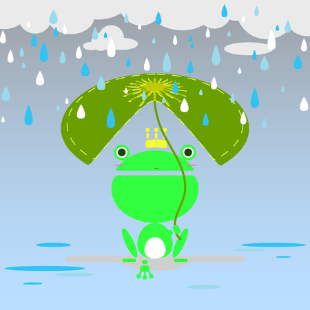 rainy season and the frog