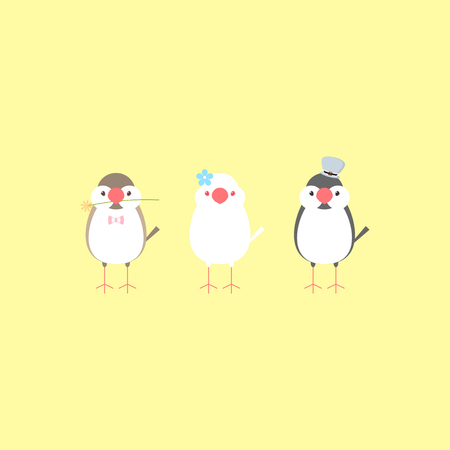 java sparrow finch buncho