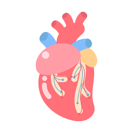 medical internal organs body part nervous system anatomy surgery human heart  healthcare logo label icon ,flat vector illustration cartoon design clip art