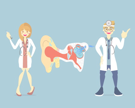 male and female doctor with ear, internal organs anatomy body part nervous system, vector illustration cartoon flat character design clip art