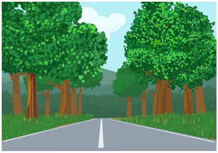 Trees along the sides of the highway vector
