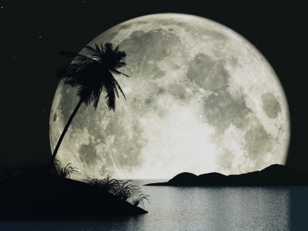 caribbean climate: 3d moon island with palm Stock Photo