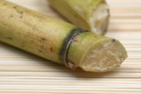 Closeup on sugar cane