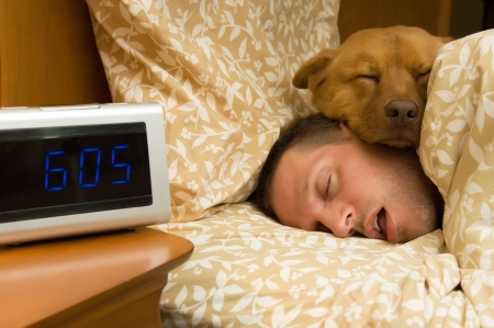 nap: Man and his dog comfortably sleeping in