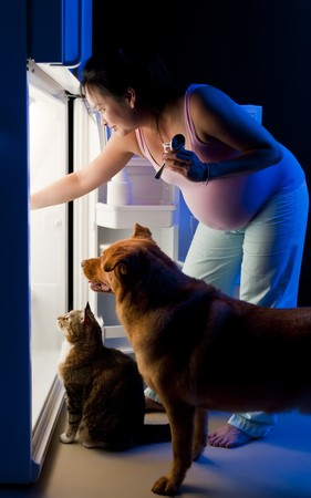 refrigerator with food: Pregnant woman and her pets looking for food in the refrigerator