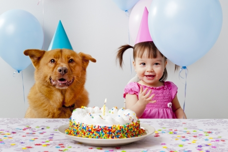 happy birthday cake: Girl and dog celebrating birthday