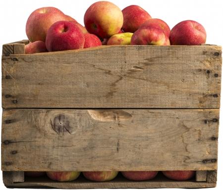 Kiste voller Äpfel auf weißem Hintergrund
