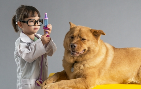 Girl playing veterinarian with dog photo