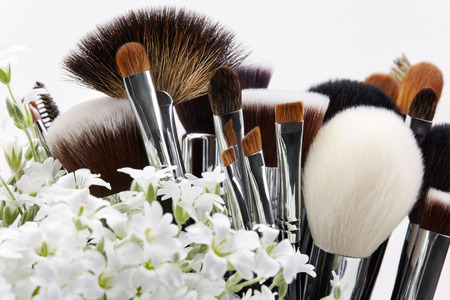 grooming product: Makeup brushes set with flowers. Chickweed. White background.