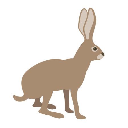 naturalistic: hare illustration style Flat profile side