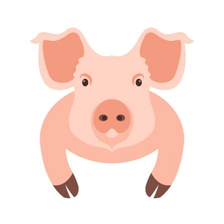 pigling: pig head face illustration style Flat Illustration