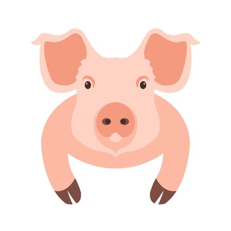 pig head face illustration style Flat Illustration