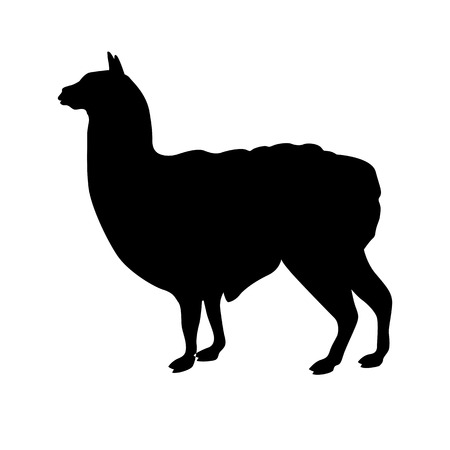 Lama illustration black silhouette