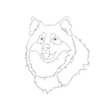 malamute: husky dog head face realistic illustration
