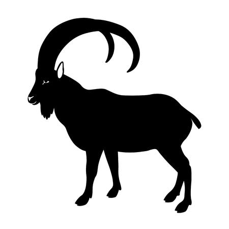 standing on one leg: Wild ram black silhouette illustration